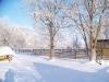 winter-005