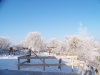 winter-022