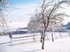 winter-023
