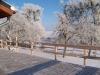 winter-030
