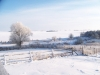 winter-034