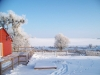 winter-052