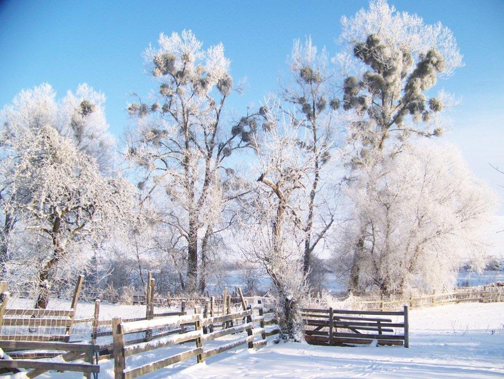 winter-013
