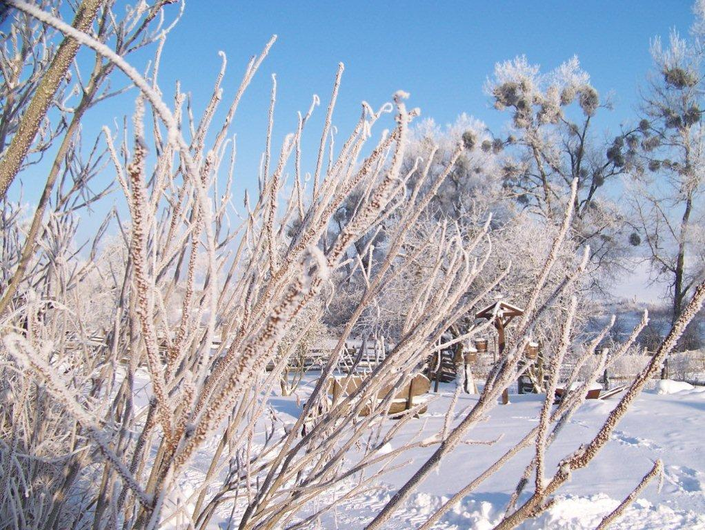 winter-017