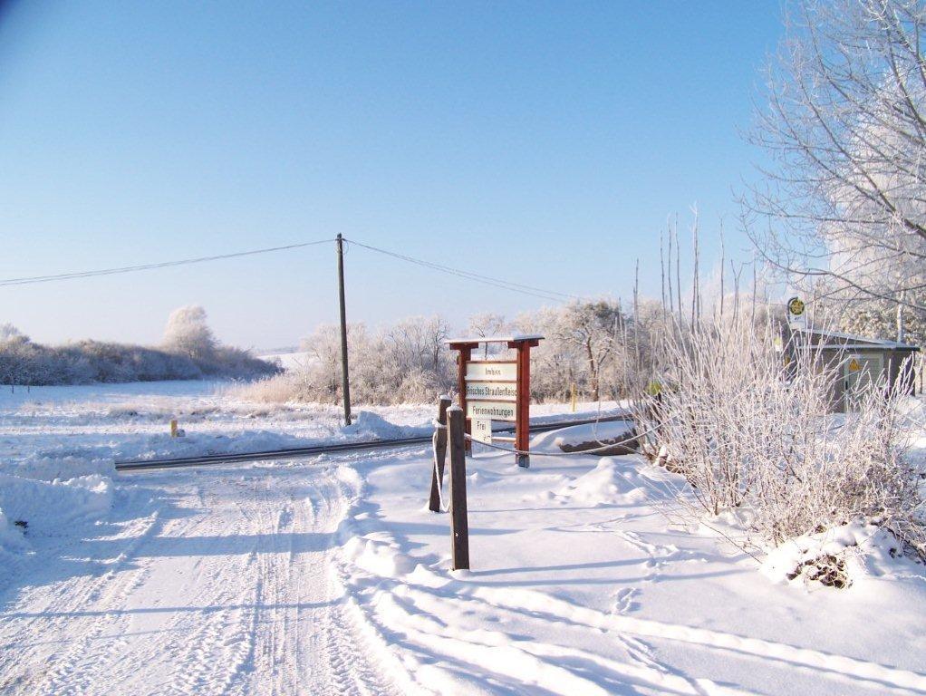 winter-046