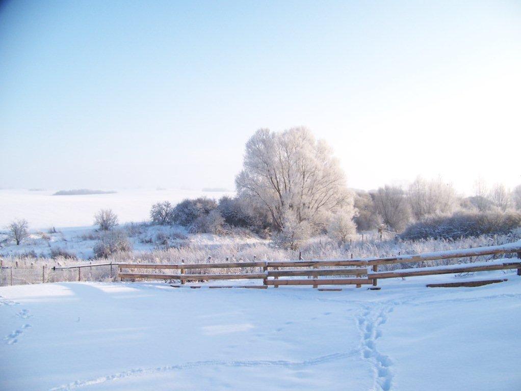 winter-053