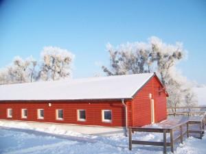 winter-047